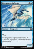 Dragonete do Vento / Wind Drake-Magic: The Gathering-MoxLand
