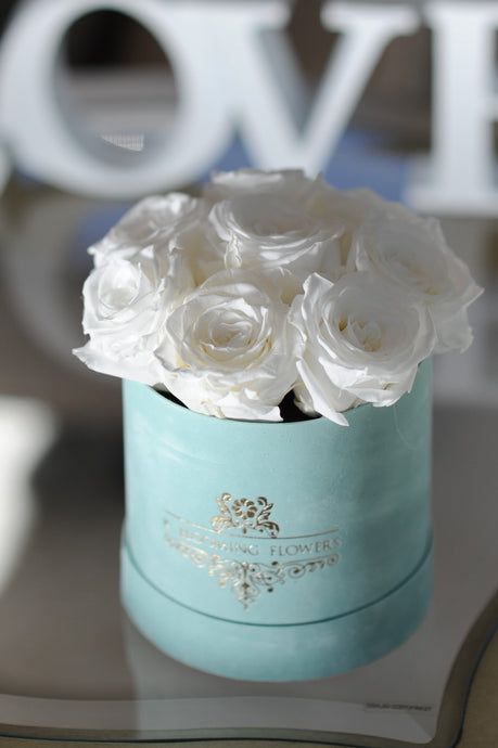 White Preserved Roses in a Signature Velvet Small Box - K-BLOOMING FLOWERS