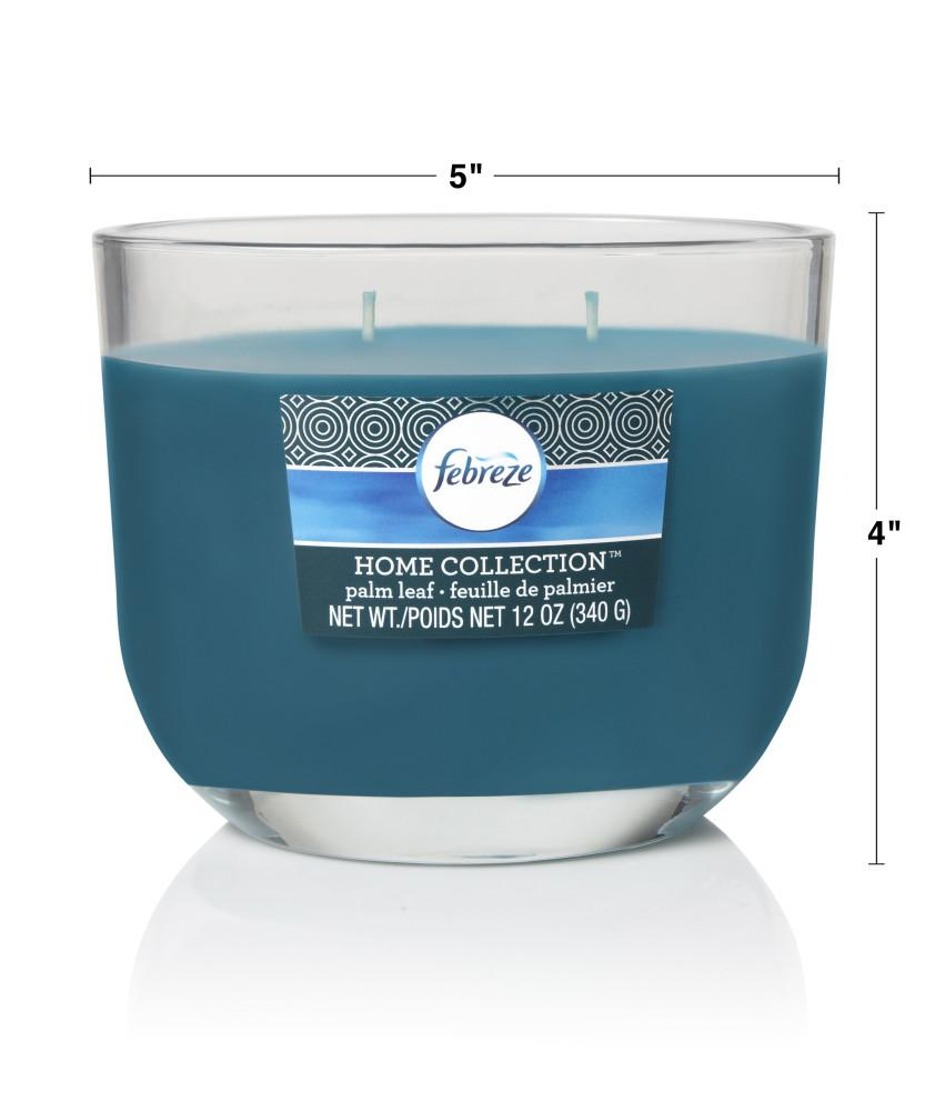 Febreze Home Collection Scented Jar Candle, Palm Leaf, 12 oz, Single - Febreze Home Collection