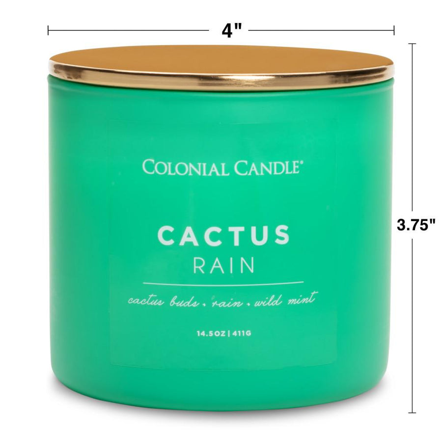 Pop of Color Scented Jar Candle, Cactus Rain, 14.5 oz, Wholesale - 4 pk