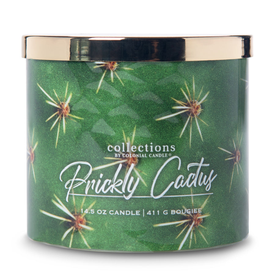 Collections by Colonial Candle Scented Jar Candle, Desert Prickly Cactus, 14.5 oz, Wholesale - 4 pk