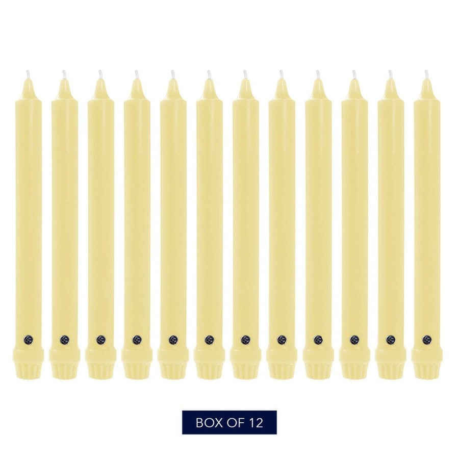Colonial Candle Classic Taper Candle, Unscented, 8 in, Limoncello, 12 pk (1 inner) - Wholesale