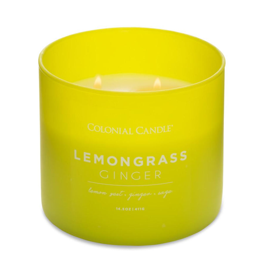 Pop of Color Scented Jar Candle, Lemongrass Ginger, 14.5 oz, Wholesale - 4 pk