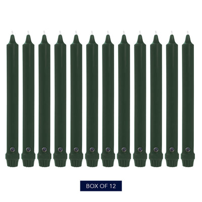 Colonial Candle Classic Taper Candle, Unscented, 10 in, Evergreen, 12 pk (1 inner) - Wholesale