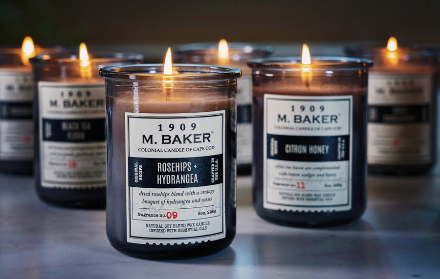 M. Baker Scented Jar Candle, Large, Eucalyptus and Lichen, 14 oz, Wholesale - 4 pk