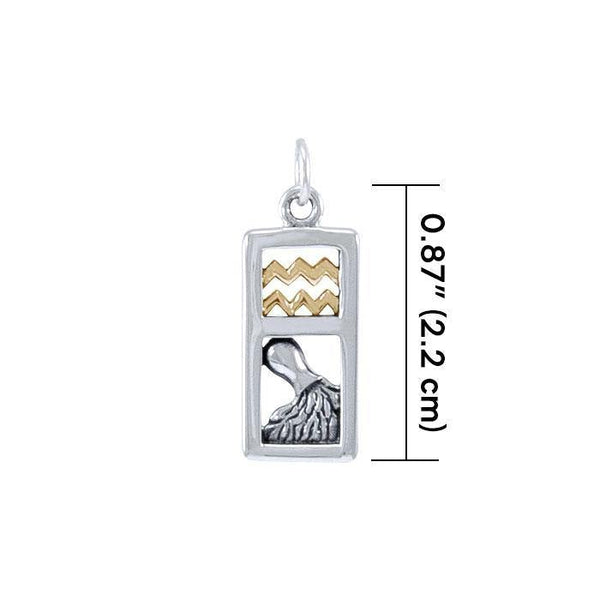 Aquarius Silver and Gold Charm MCM293