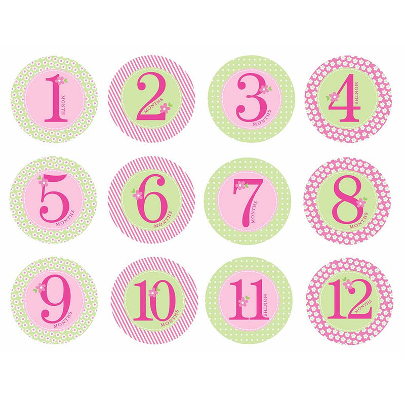 Baby Milestone Stickers Girl