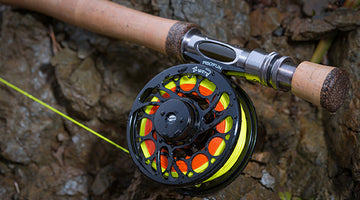An In-Depth Review of the Piscifun 5/6 Wt Sword Fly Reel