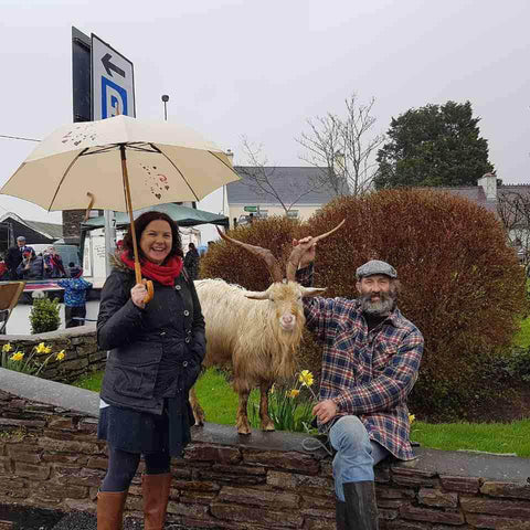 Love umbrella in Kerry with goat
