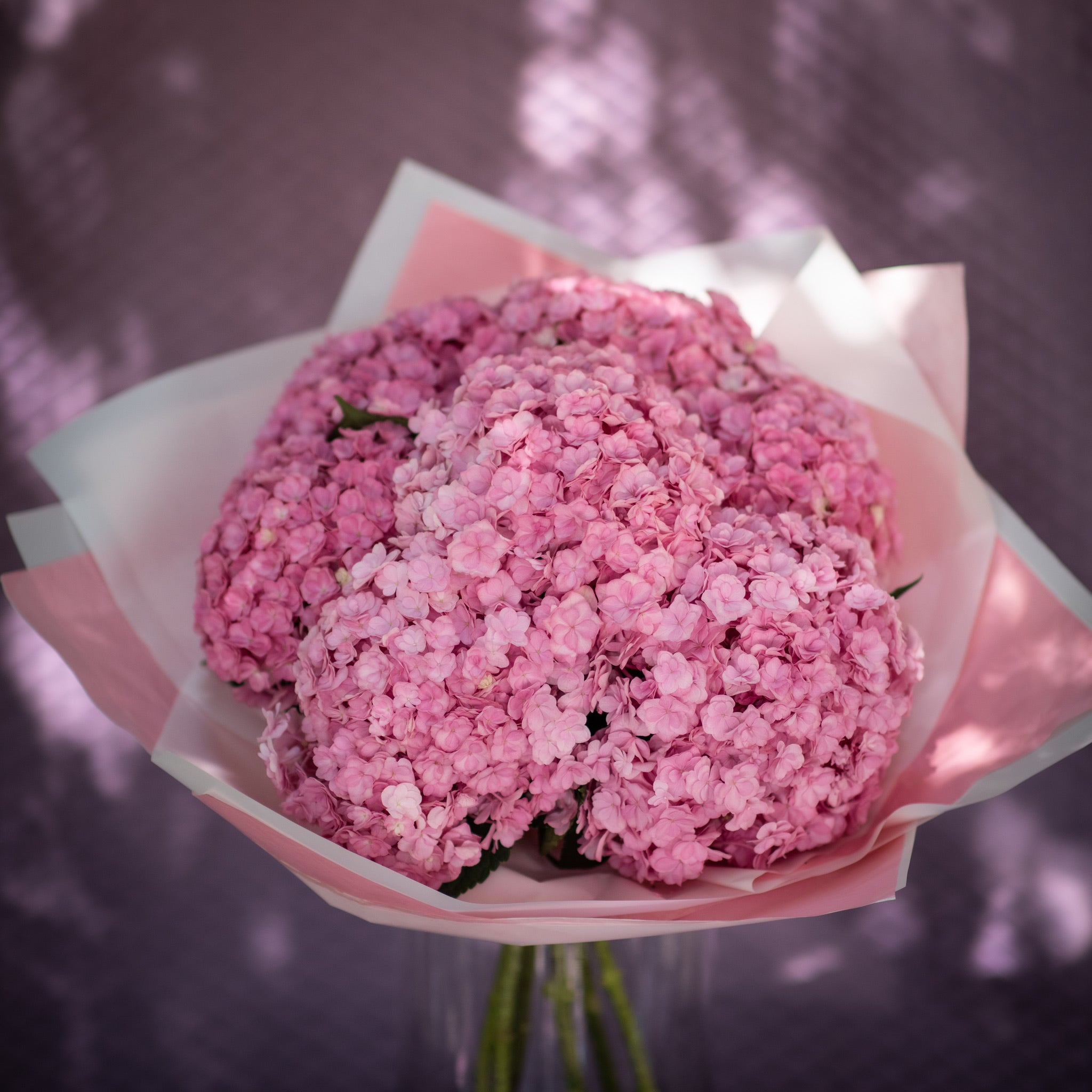 Contemporary - Pink Hydrangea Bouquet