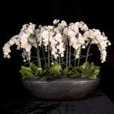 Faux Phalaenopsis Orchid Arrangement In Oval Vessel