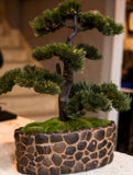 Japanese Inspired Faux Bonsai