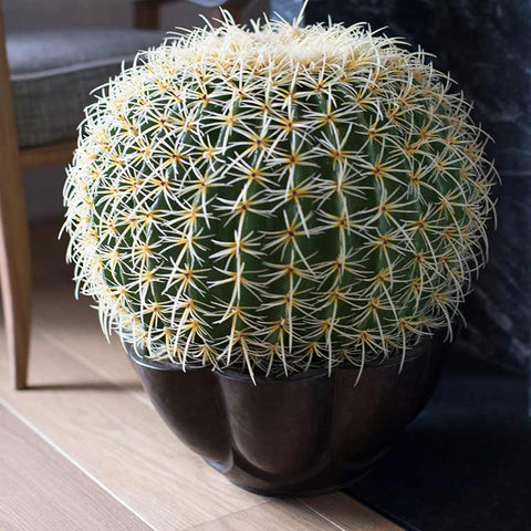 Faux golden barrel cactus in heavy ceramic container