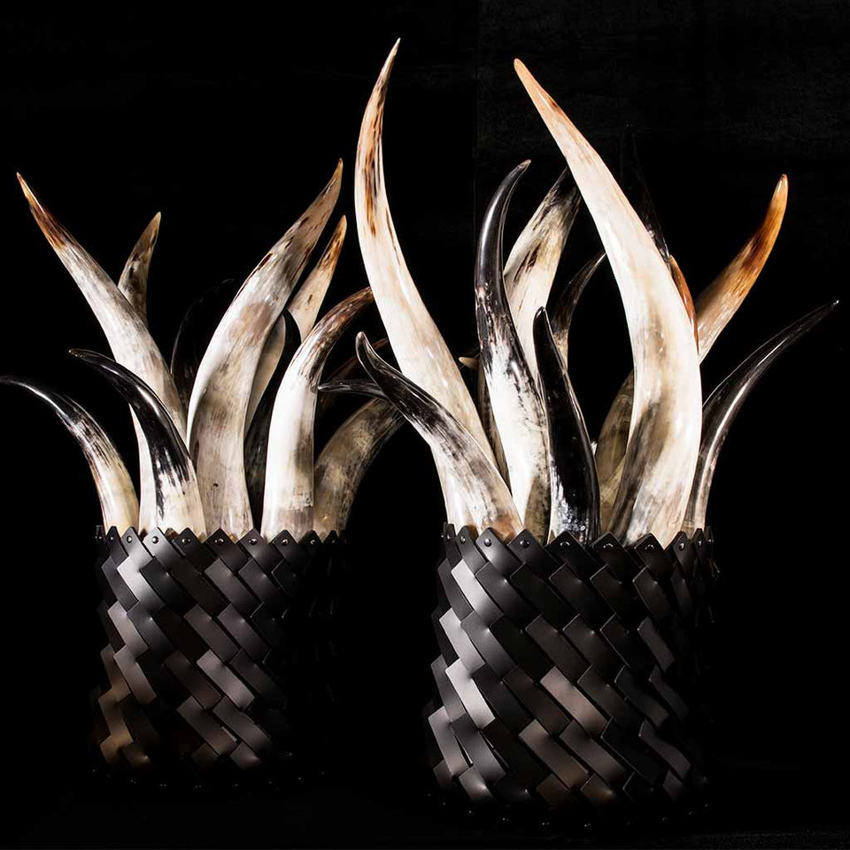 Pair of large polished cow horns arrangement in hand-woven baskets