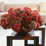 960x960**center**Lush composition of rich red and lilac hydrangeas**enquire
