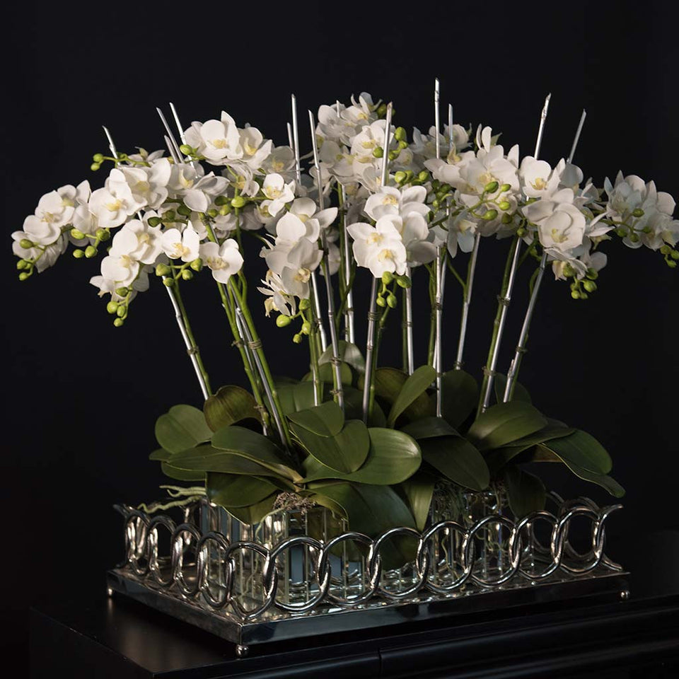 Mini white phalaenopsis arranged in mirrored container within silver tray