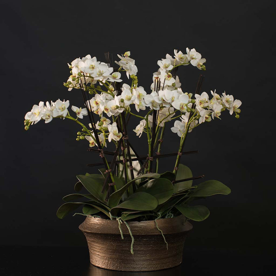 Mini white silk phalaenopsis arranged in bronze textured ceramic container