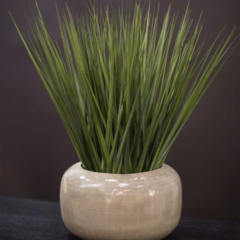 Arrangement of faux grass in beige ceramic container