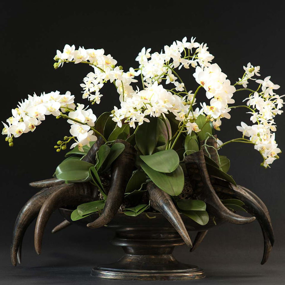 Miniature silk orchids arranged with faux vintage horns