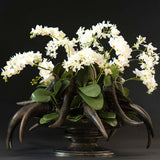 480x480**center**Miniature silk orchids arranged with faux vintage horns**enquire