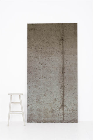 Concrete #220 - Grey