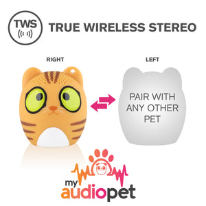 My Audio Pet Classical Cat Wireless Bluetooth Speaker with True Wireless Stereo Pair with any other MyAudioPet