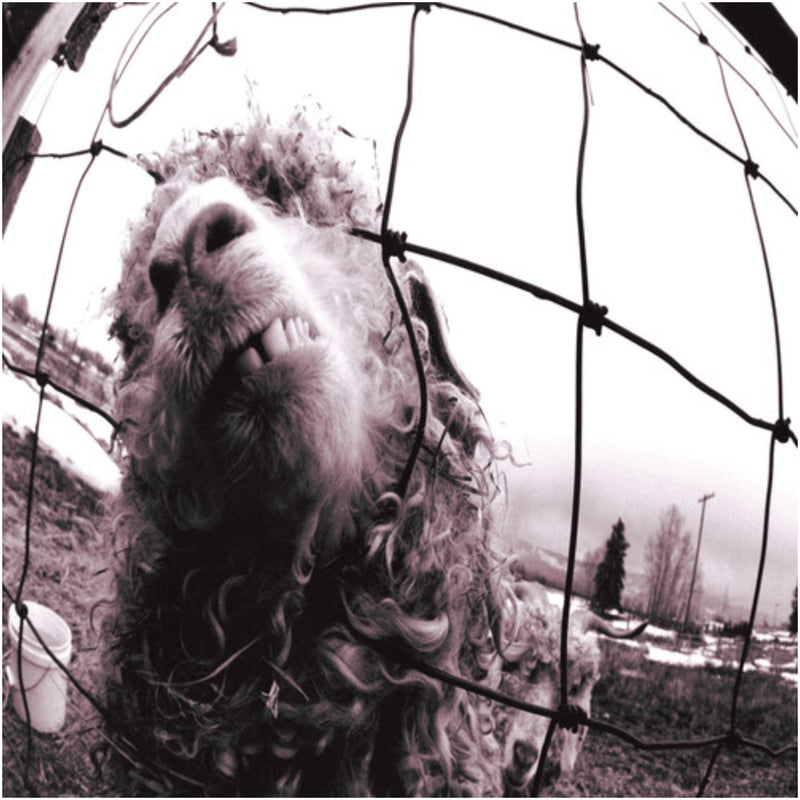 Pearl Jam - Vs. Expanded Edition CD