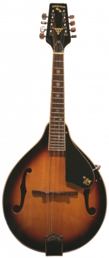 McBrides AM-10 Mandolin