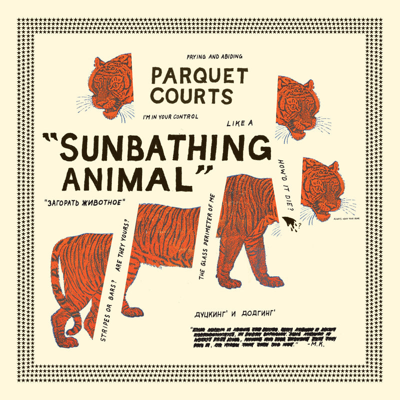 Parquet Courts - Sunbathing Animal CD