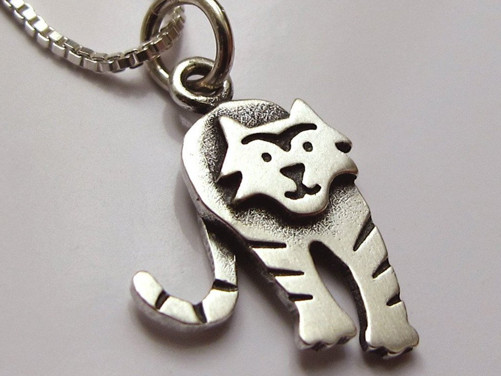 Collar Mini Amigo Tiger