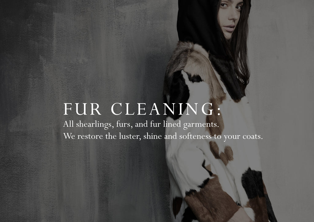 Clean your fur in New York City