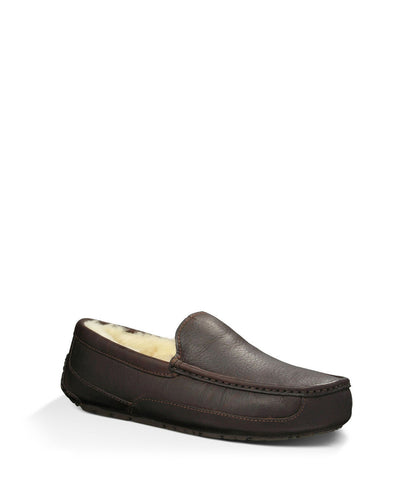 UGG® | Ascot Slipper | Men