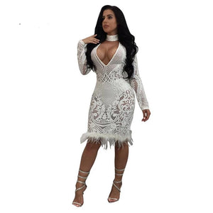 Sexy Sequin feather Mesh Dress