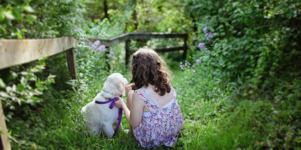 What It's Like To Get A Puppy (by 9-year-old Amelie Hicks)