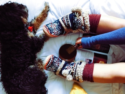 cosy socks with dog beside them