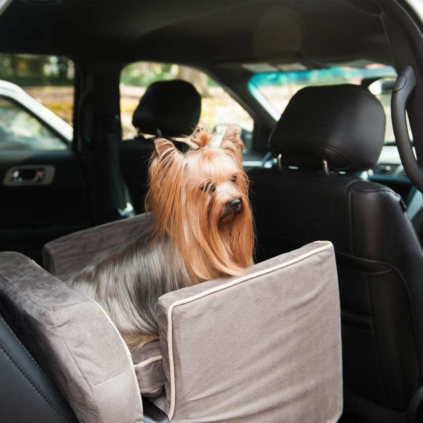 Lookouts & Dog Car Seats