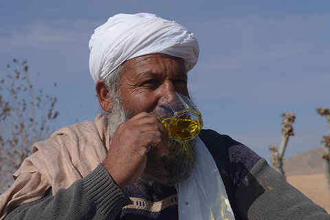rumi partners with hundreds of farmers in afghanistan to bring you the world's best saffron