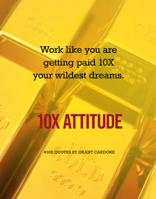 10X Attitude Screen Image