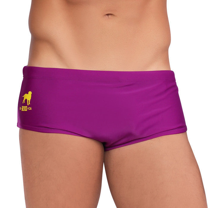 BARNEY / PURPLE Brazilian Sunga Swimwear - Men\u0027s Designer Swimwear