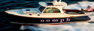 oomph picnic boat