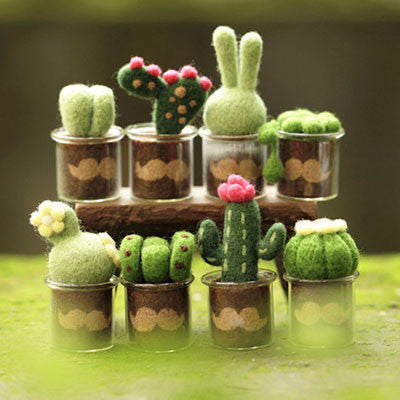 Cactus Moustache Set - DIY Felting Kit
