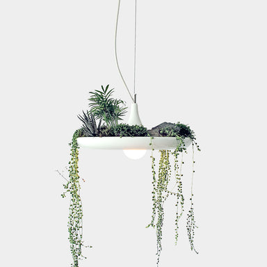 Playful Babylon Pendant Light and Planter