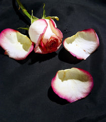 Sugared Rose Petal Recipe