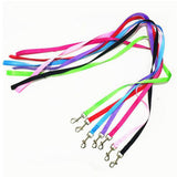 Pet products rainbow Pet Leash  dog traction color optional quality is very good dog supplies 5zcx380 - Pestora