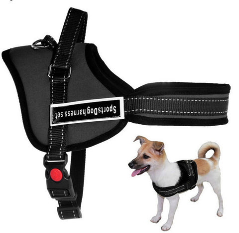 Best Quality Pet Dog harness Pet dog Chain leash Collar Supplier Product 5 Size Nylon for pet dog Small Large Dog Red Black Girl