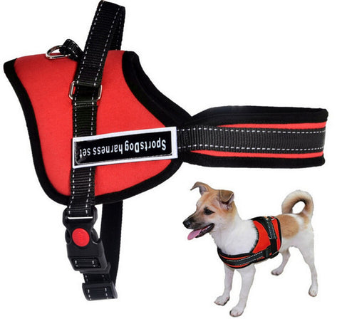 Best Quality Pet Dog harness Pet dog Chain leash Collar Supplier Product 5 Size Nylon for pet dog Small Large Dog Red Black Girl - Pestora