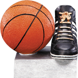 Basketball Color Tek Series P