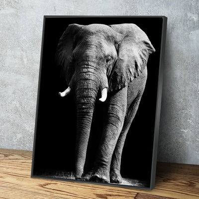 Elephant Shadow Canvas Set