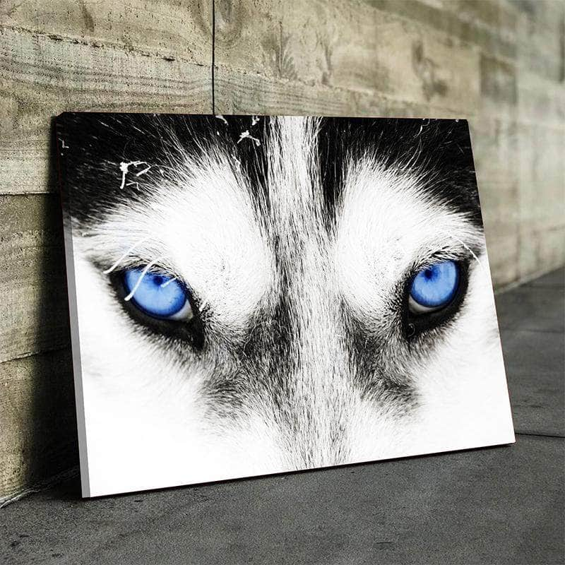 Wolf Eyes Canvas Set