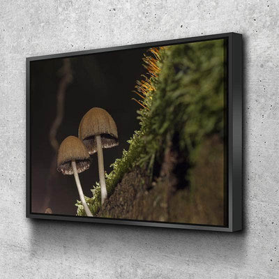 Shroom Up Canvas Set